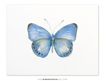 Blue Butterfly Painting, Butterfly Print, Original Blue Butterfly Watercolor, Blule Butterfly Greeting Cards, 110 Blue Jack Butterfly