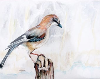 Jay in a winter, original pen and watercolor pencils painting