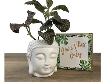 Buddha Statue, Ceramic Planter, Succulent Planter, Buddha, succulent pots, meditation, girlfriend gift, best friend gift, mothers day,