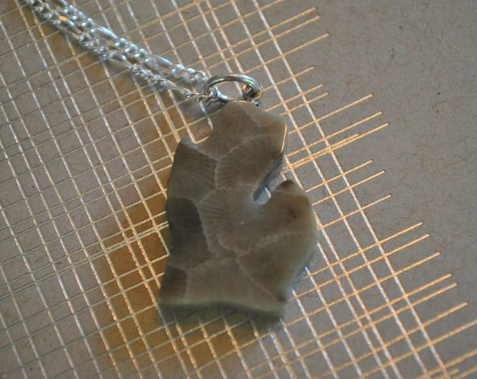 Petoskey stone Michigan shaped necklace,  Michigan necklace, Up North necklace