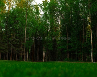 Green Forest Digital Backdrop