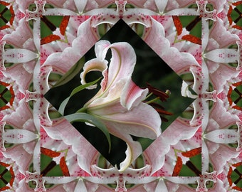Asiatic Lily In the Pink Large Wall Quilt