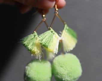 Fan palm green tassels