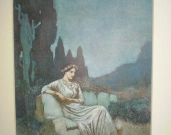 A lovely Edmund Dulac book illustration taken from an old book dated early 1900's