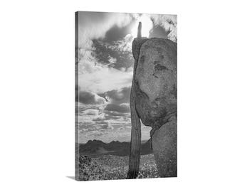 Desert Picture, Vertical Wall Art, Arizona Landscape Photography, Western Picture, Tucson Gift, Saguaro Cactus Print, Canvas Wrap