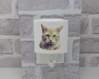 Ginger Cat Ceramic Nightlight Plug In 5533 On/Off Switch Electric Cat Lover