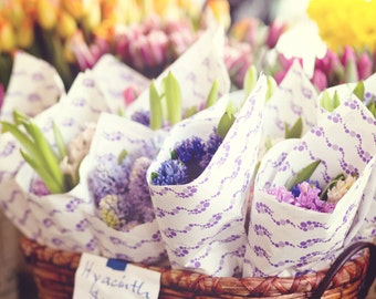 Seattle Photography - Pike Place Market Photo - Hyacinths - Whimsical - Fine Art Photography Print - Home Decor