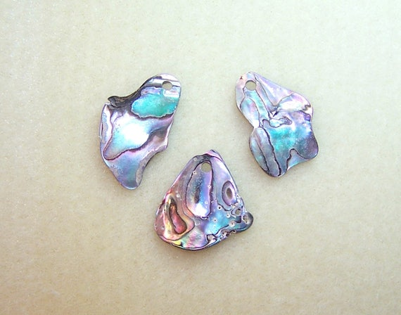 Drilled abalone pendants set of 3 top drilled abalone shell pendants drilled abalone pendants set of 3 top drilled abalone shell pendants or charms for diy jewelry making natural abalone charms ready to ship from mozeypictures Image collections