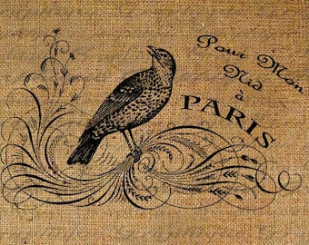Bird French France Words Text For My Nest In Paris Digital Image Download Transfer For Pillows Totes Tea Towels Burlap No. 1050