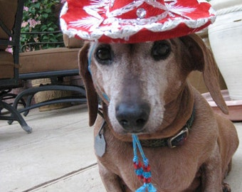 Dog-Cat Sombrero - Customizeable Red Sombrero for cat or dog