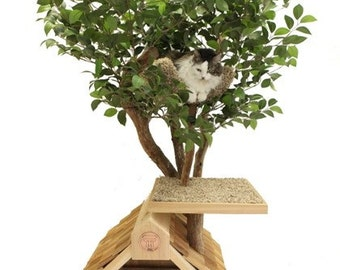 Sapling (small) Cat Tree House