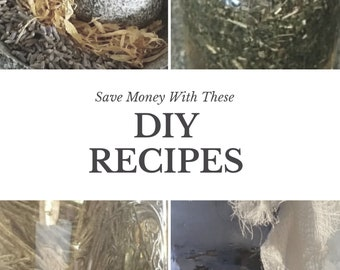 Save Money with These DIY Recipes
