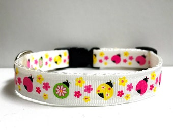 "5/8"" colorful ladybugs collar"