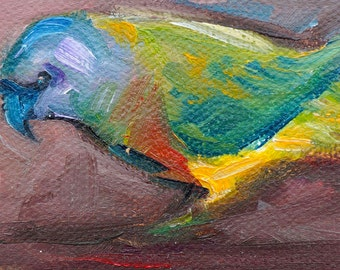 """aceo Original Oil Paintings, small oil paintings, art & collectibles, 3.5x2.5"""", """"Lepking's Parrot"""""""