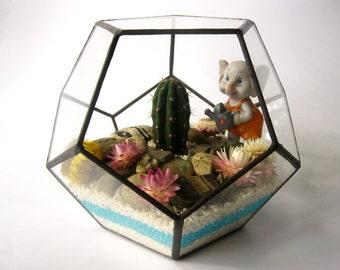 Geometric glass terrarium Dodecahedron medium Succulent terrarium Planter Terrarium air container