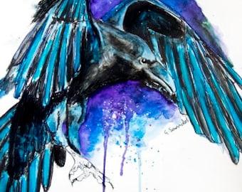 Raven Night Bird Illustration Limited Edition Giclee Archival Art Print