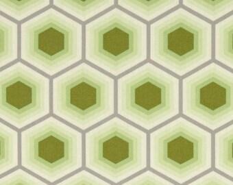 Tula Pink - Bumble - Honeycomb - Sprout - Free Spirit - Per Yard