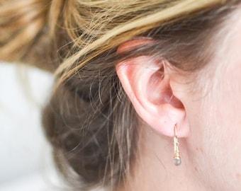 Labradorite Briolette Drop Earrings, 14kt gold filled
