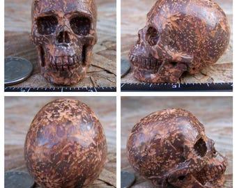 "2.06"" Starburst Jasper Skull 3.0oz 85.7g Realistic Crystal Healing Mystic Reiki Wicca Altar Shrine 2 inch Brown Large Fireworks SK983"