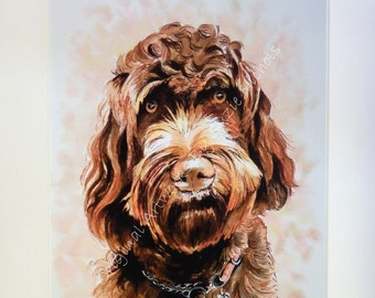 Labradoodle Giclee Print- Quality A4 Mounted Giclee Print by Artist Suzie Nichols (dog, art, pen and ink, drawing)