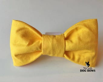 Solid Yellow Dog Bow Tie - Yellow dog bowtie - Yellow dog bow