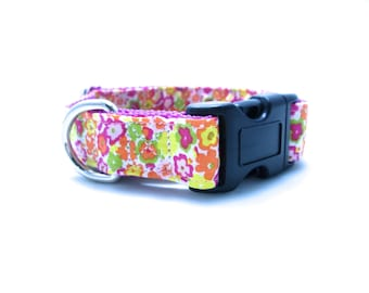"""Houndstown 1"""" Bright Garden Buckle or Martingale Collar, Any Size"""