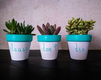 Please Don't Die mini planters - 2 1/2 in - Customizable colors - plants not included