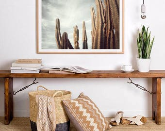 Desert Cactus Photo Print, Boho Cacti Wall Art, Large Poster, Contemporary Photography, Modern Minimalist, Printable Digital Download