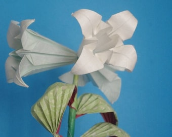 Trumpet Lily stem real origami