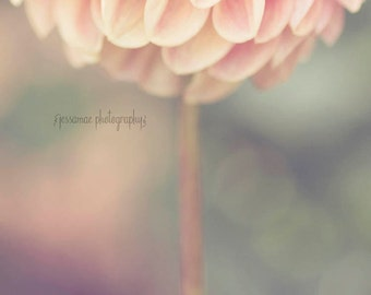 Dahlia Wall Art, Pink Flower Photography, Dahlia Photography, Pink and Green Nursery Decor, Mint Art, Pink Flower Print, Pastel Nursery Art