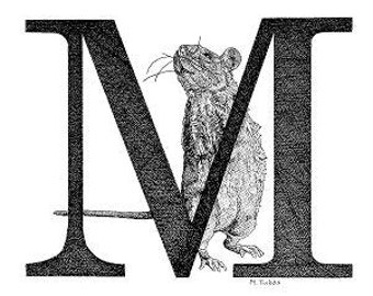 Illustrated Pen and Ink Alphabet Note Cards Stationery M
