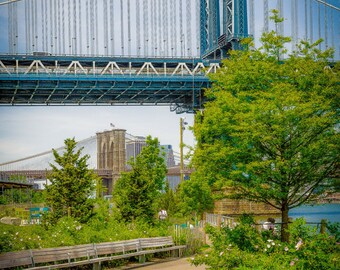 Manhattan Bridge with Brooklyn Bridge New York City