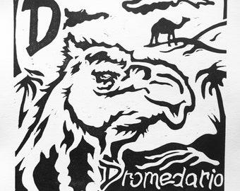 Spanish alphabet: D is for Dromedario - Dromedary