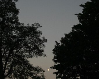 Moonrise on the Blue Ridge Parkway at Doughton Park Fine Art Photo
