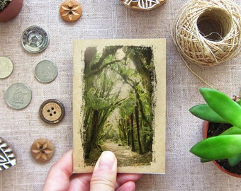 Notebook Forest 38. Walk the Forest Mini Traveling Notebook - Pocket Size Journal for your Inspiration