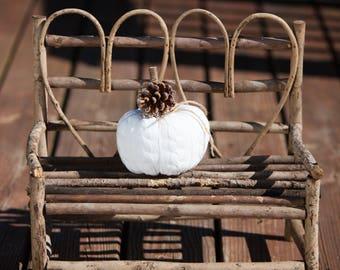 White Fall Pumpkin Small