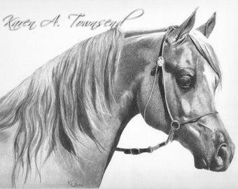 Original Arabian horse pencil portrait