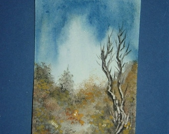 aceo miniature watercolour painting. (ref E123)