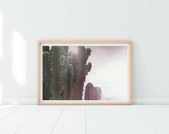 Imprimer des cactus, Cactus photo, art mural Cactus, impression de Cactus, Cactus décor, désert print, impression succulente, impression de botanique, paysage d'Arizona