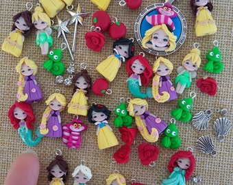 Princess charm and other disney characters