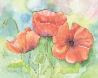 Poppies Watercolor Painting Giclee Print 10 x 8 - 11 x 8.5