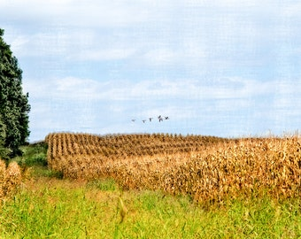 Going South : archival quality fine art photography, horizontal format, landscape