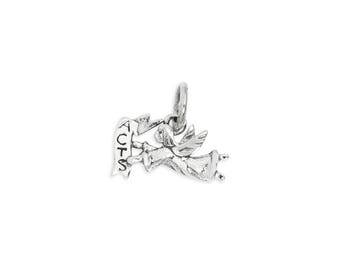 Your Choice of Sterling Silver or 14K Gold Angel ACTS charm