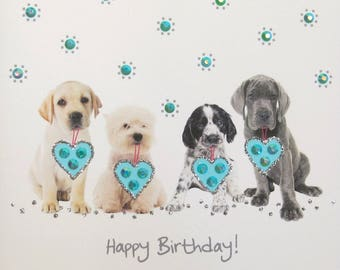 Adorable Birthday Puppies