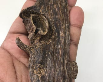 Rare Agarwood Piece - 15grams