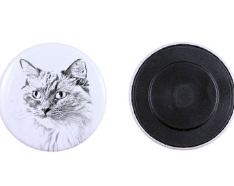 Magnet with a cat -Ragdoll