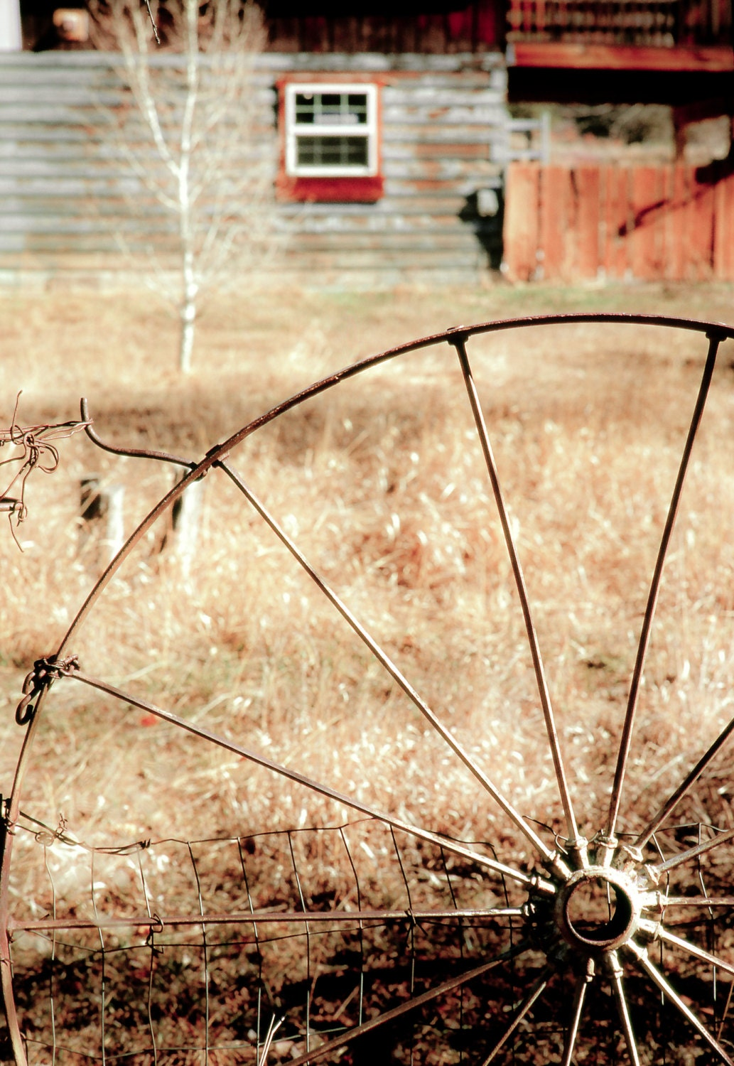 Modern Wooden Wagon Wheel Wall Decor Images - Wall Art Collections ...
