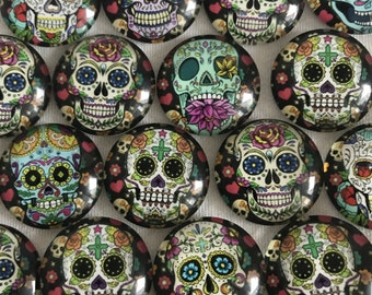 Sugar Skull Day of the Dead Magnet