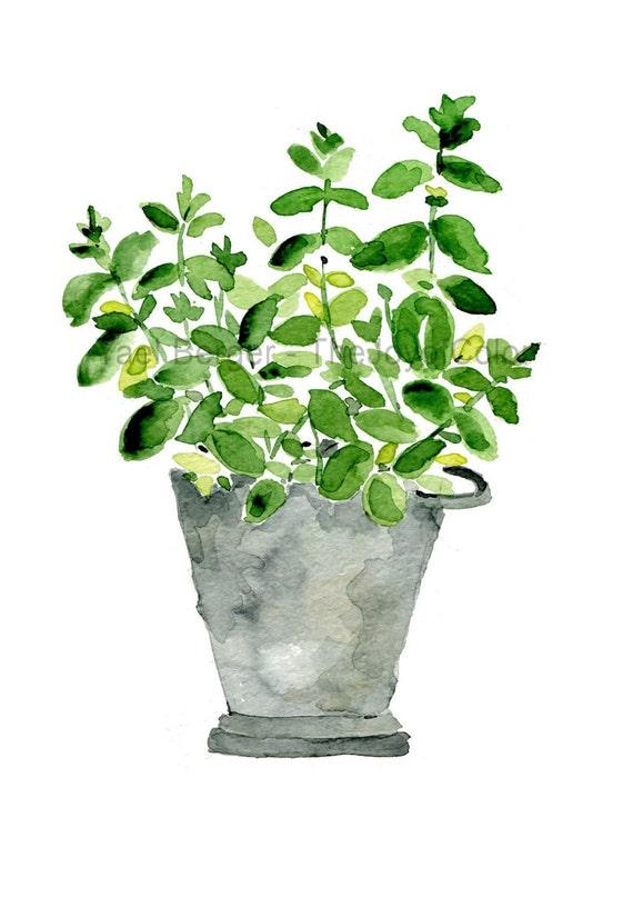 Mint Plant Art Print Mint In Planter Print Kitchen Art Herb
