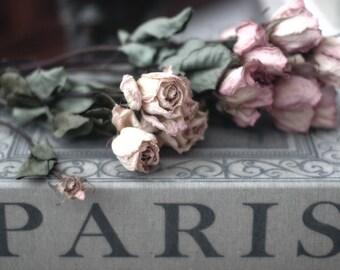 Paris Photography, Paris Roses Book Print, Roses Decor, Paris Shabby Chic Decor, Paris Books Wall Art Prints, Paris Roses, Paris Books Print